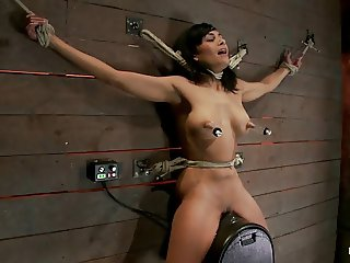 Nipples pulled while Sybianride